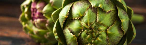 artichokes good for liver health