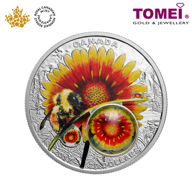 "Tomei x  Royal Canadian Mint Silver 9999 ""2017 Mother Nature's Magnification: Beauty Under the Sun"" Numismatic Coloured Coin 1oz. (160159)"