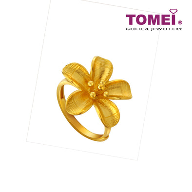 Ring | Tomei x Xifu Yellow Gold 999 (24K) (XF-XYRH-O)