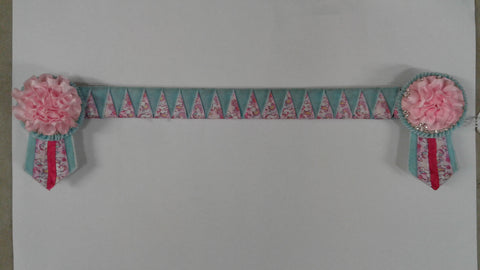 "15"" Light Blue  & Pink Ponies Browband with Rosettes"