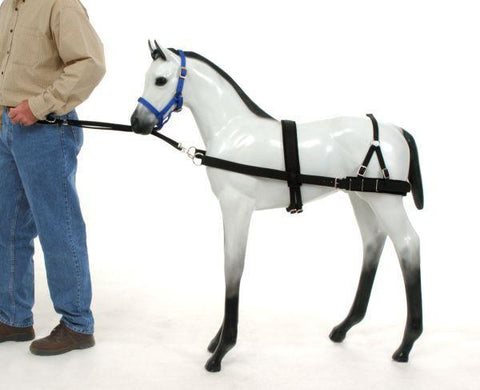 Tough1 Blk Foal Training Harness