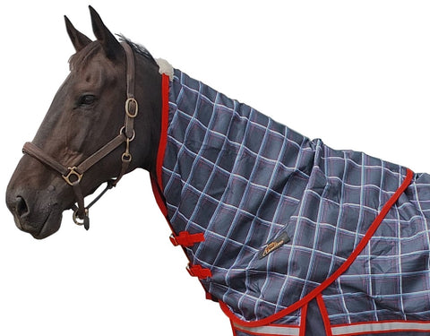 Cavallino Yorkshire Navy/Red Neck Rug
