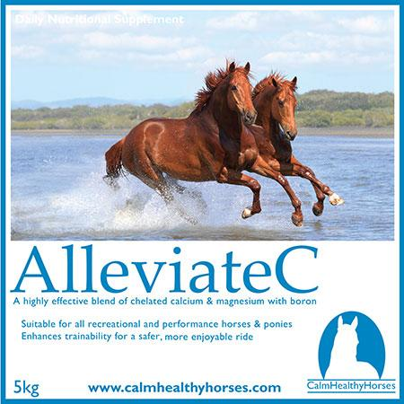 Calm Healthy Horses Alleviate C