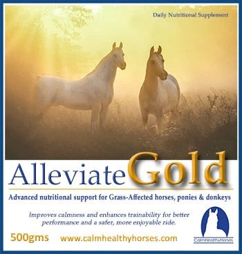 Calm Healthy Horses Alleviate Gold