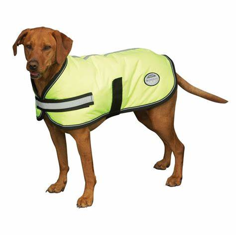 Weatherbeeta Dog Reflective Exercise Coat