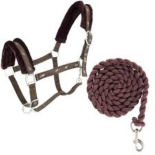Horze Basel Halter with Lead
