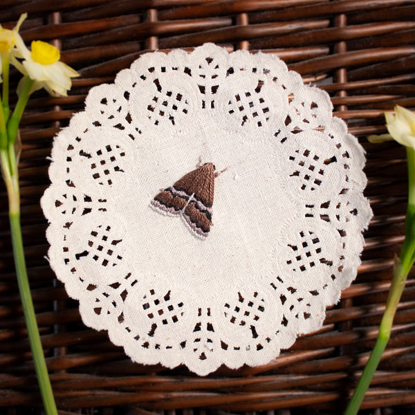White Lined Graylet - Embroidered Moth on Doily