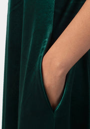 Rayne Green Velvet Dress