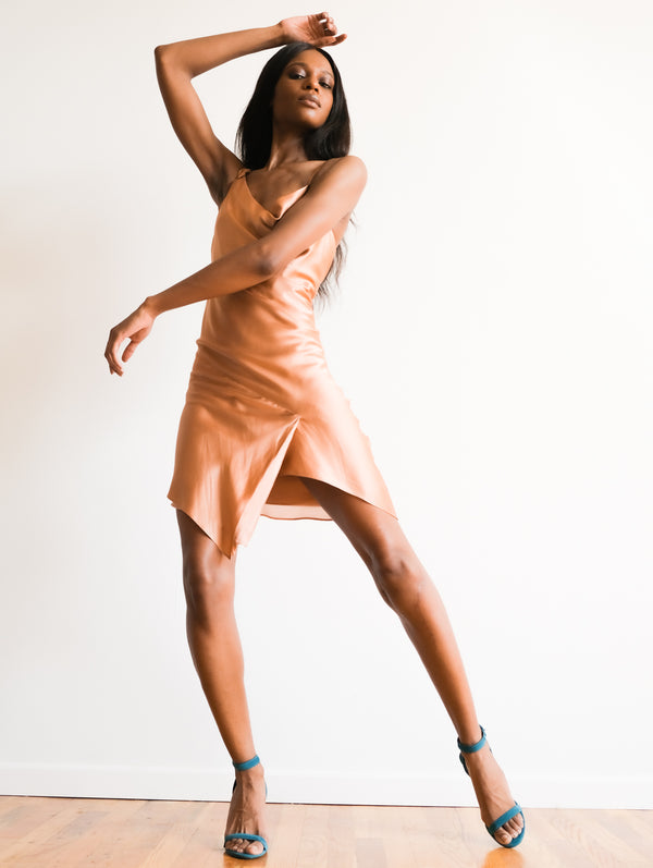 Michelle Mason Silk Asymmetrical Dress