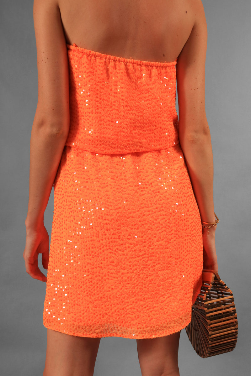 Calypso St. Barth Sequin Mini Dress