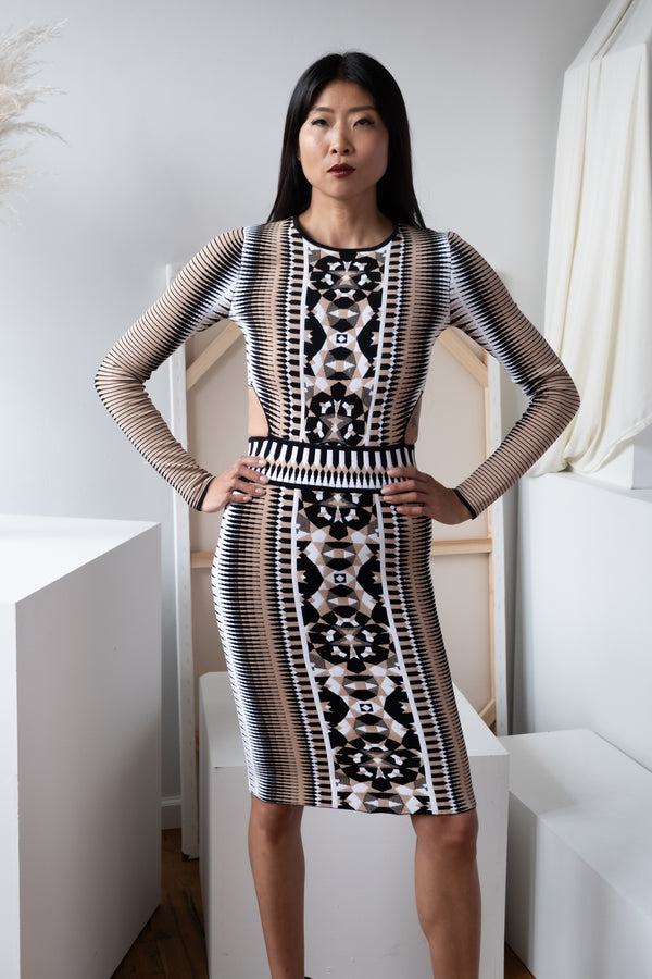 Torn by Ronny Kobo Printed Knit Dress