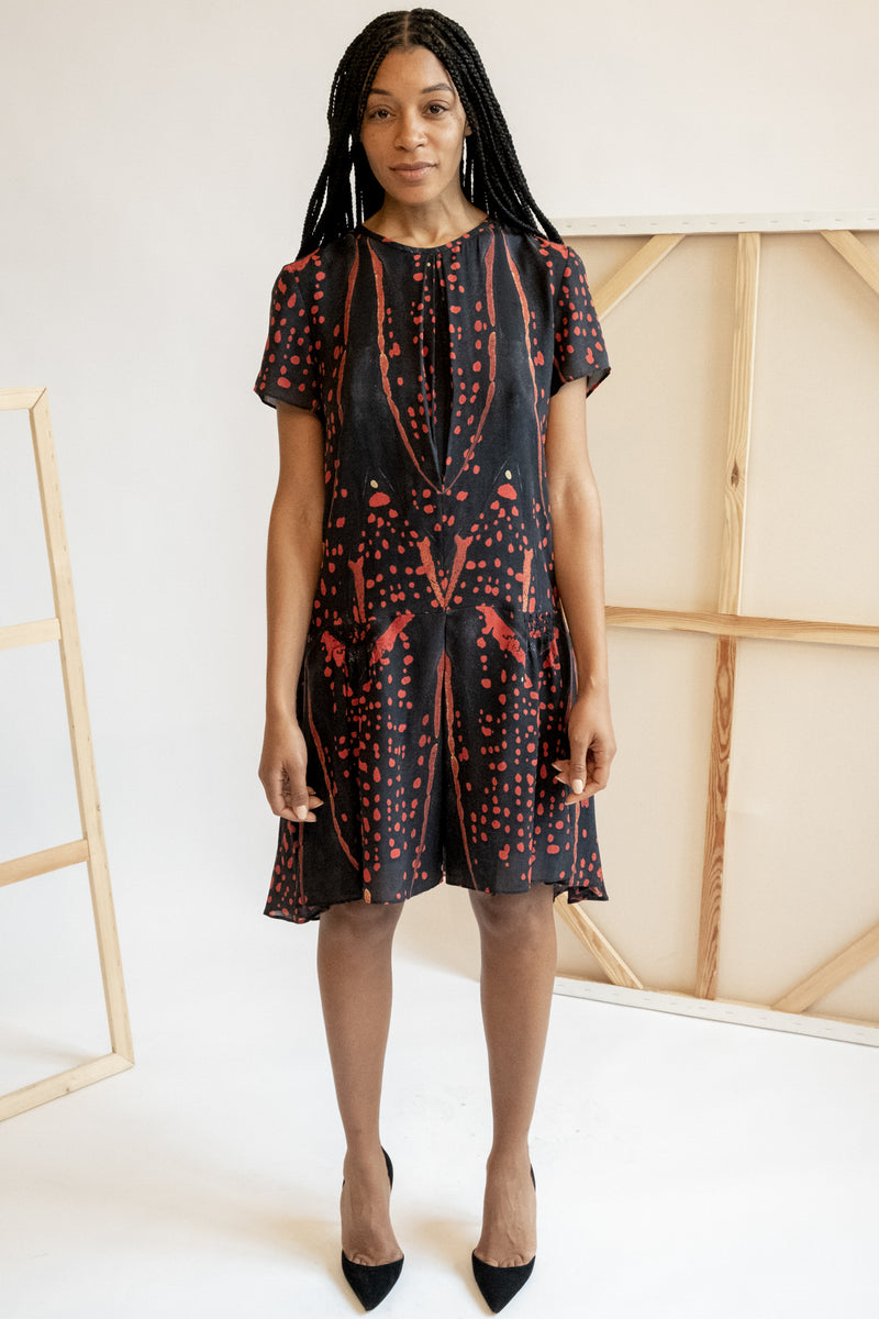 Proenza Schouler Printed Drop Waist Silk Mini Dress