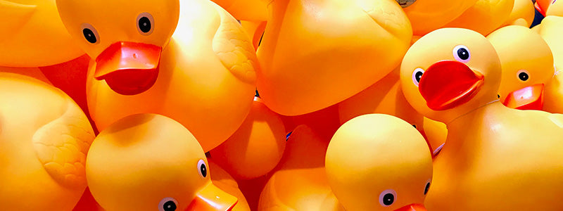 Closeup of a pile of yellow rubber ducks