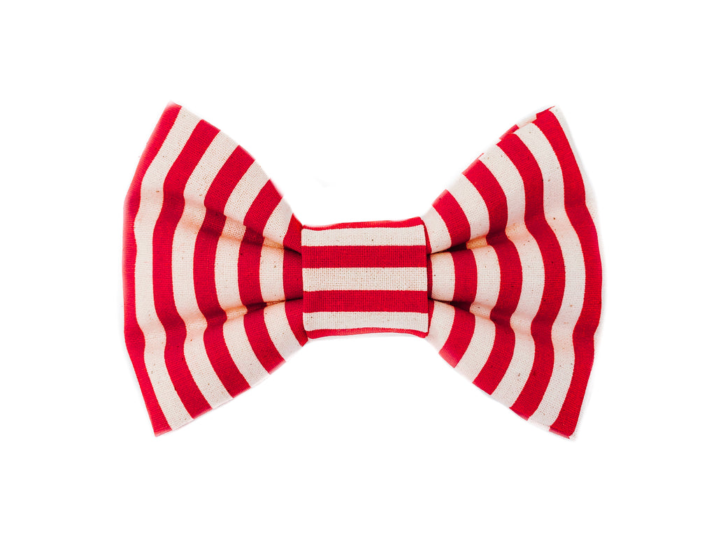"""Candy Cane"" Bowtie"