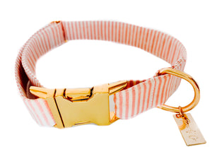 """Springtime Blush"" Collar"