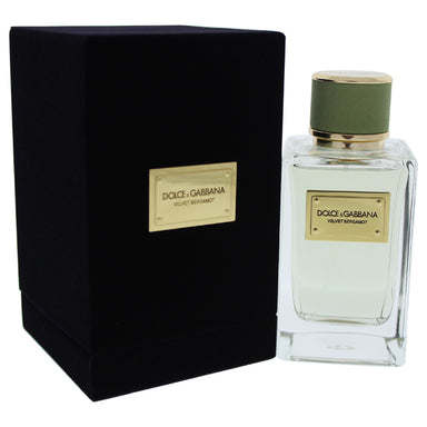 Velvet Bergamot by Dolce & Gabbana for Men