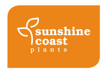 Sunshine Coast Plants