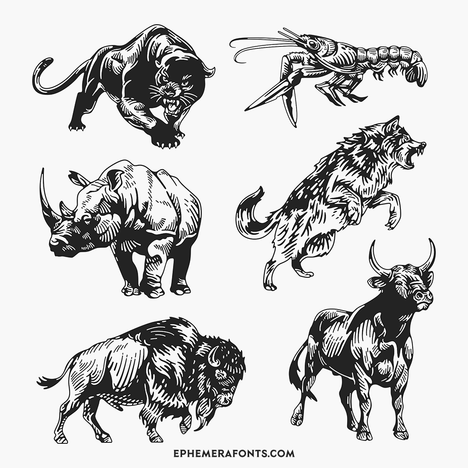 Wild Animal Illustrations 01 part 3