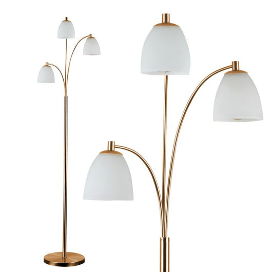 Dantzig Copper Floor Lamp with Dome Glass Shade