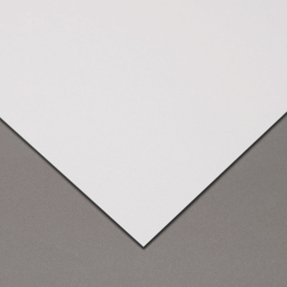 Am-Guard Antimicrobial Wall Protection, Standard Sheet - am-guard