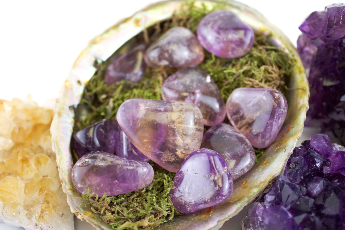Ametrine tumbled healing stone in abalone shell surrounded by amethyst and citrine clusters