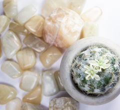 white moonstone and cactus, healing crystals, reiki, spiritgypsy, spirituality