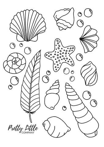 Shells Colouring Page - Free Download