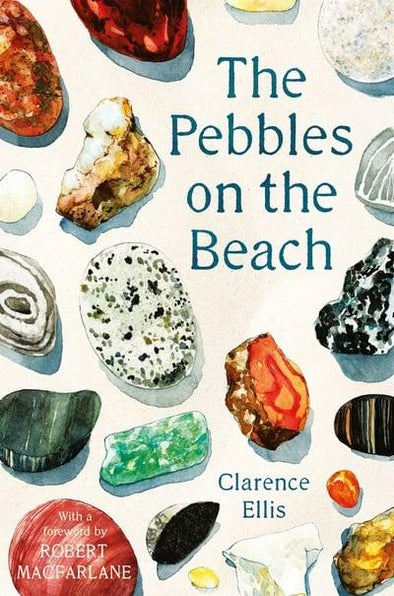 The Pebbles on the Beach (Paperback)