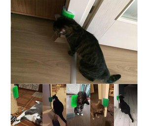 【BUY ONE GET ONE FREE】Cat Self Grooming Wall Massage Brush With Catnip