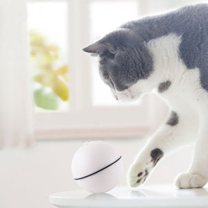 【50% OFF】Cat Toy Electric Rotating Ball, Automatic Cat Teaser Chasing Toy LED Light