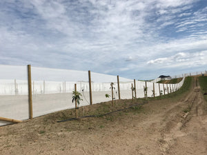 "WINDBREAK 2.0M X 100M ""SUPER NET"" 160GSM"