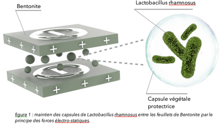 La technologie Bioticlean