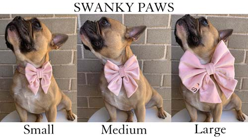 a pic showing dog bow tie sizes small medium and large from Swanky Paws in Pink Velvet