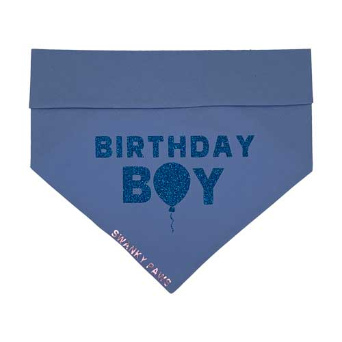 Birthday Boy Reversible Blue Dog Bandana For Boys
