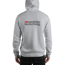 Load image into Gallery viewer, Super Silver Haze | Hoodie