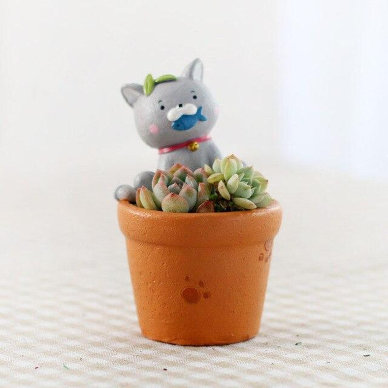 Terrarium enfant Chat