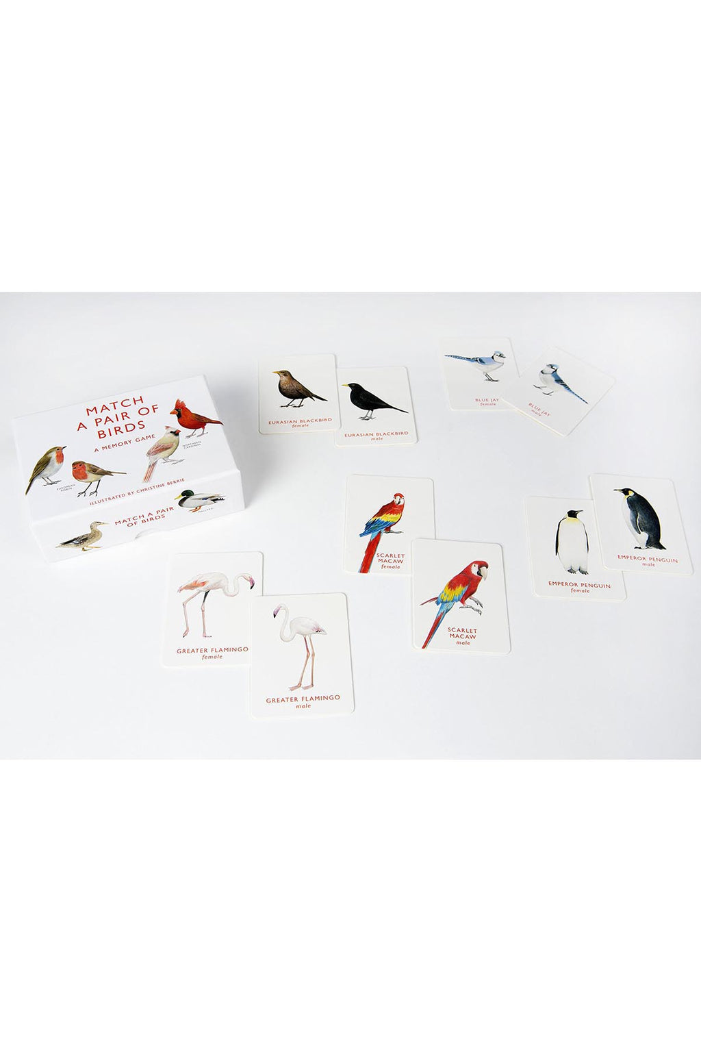 Bird Pair Memory Game - Tigertree - 2