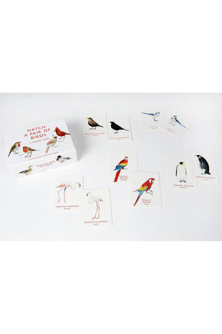 Bird Pair Memory Game