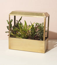 Load image into Gallery viewer, Brass Smart Growhouse