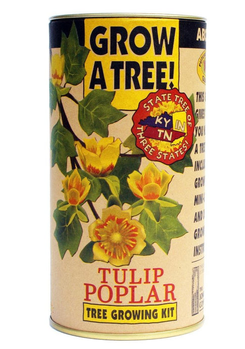 Grow Kit Tulip Poplar - Tigertree