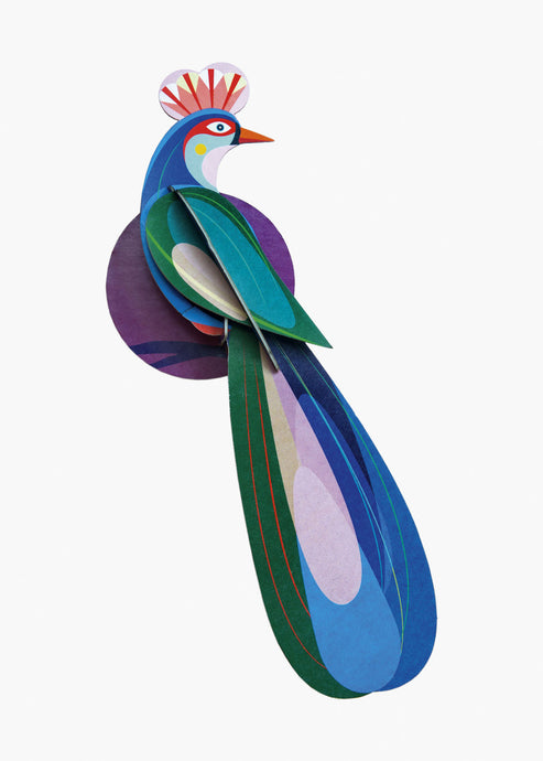 3D Paradise Banda Bird Kit - Tigertree