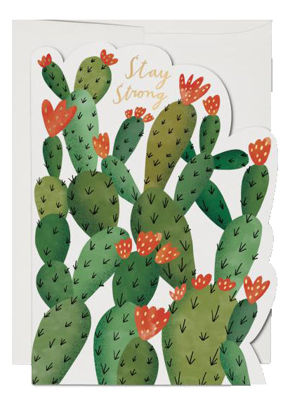 Stay Strong Cactus Card - Tigertree