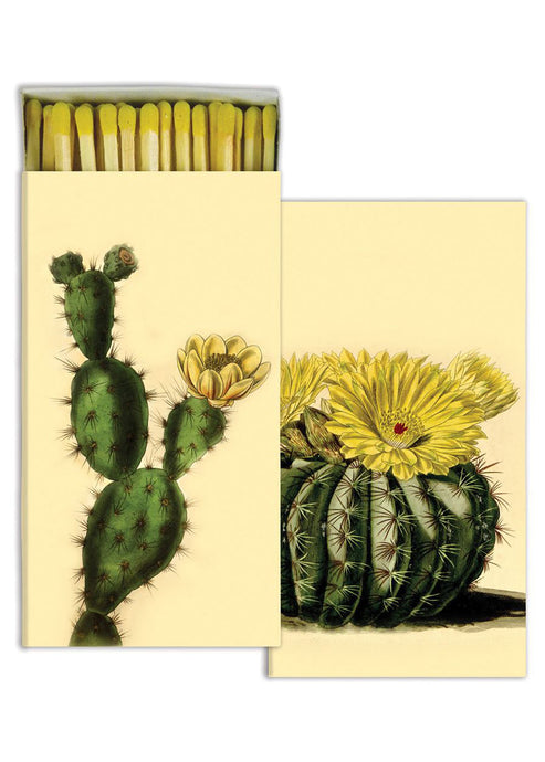 Cactus Matches - Tigertree