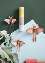 Load image into Gallery viewer, 3D Set Of 3 Comet Butterflies Kit - Tigertree