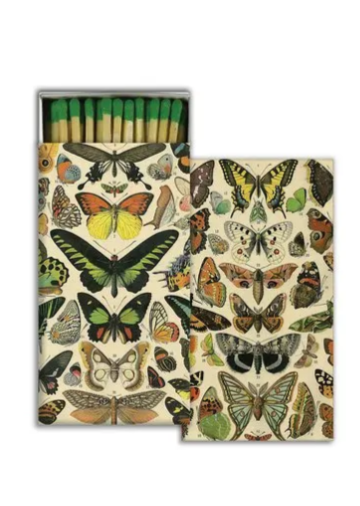 Butterfly Specimens Matches - Tigertree