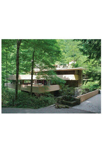 Double Sided Fallingwater Puzzle - Tigertree