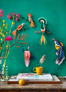 3D Flores Bird Kit - Tigertree
