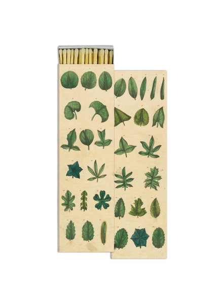 Matches - Simple Leaves - Tigertree