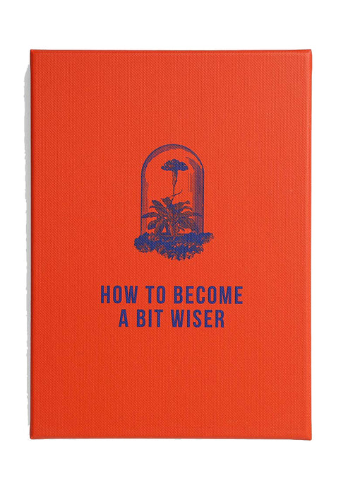 How To Become A Bit Wiser - Tigertree