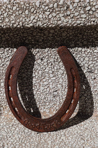 Cast Iron Horseshoe - Tigertree